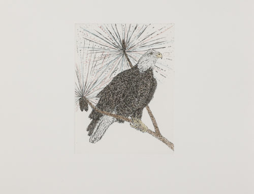 Kiki Smith, 'Eagle'